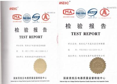 型式试验报告